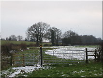 SP2680 : Footpath from Brook Farm to Millison's Wood by John Winterbottom