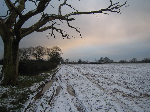 Footpath to Woodlands Farm, Back Lane.