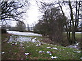 SP2880 : Footpath by Unnamed Brook. by John Winterbottom