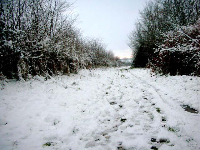 Cotton Lane, Stanwick