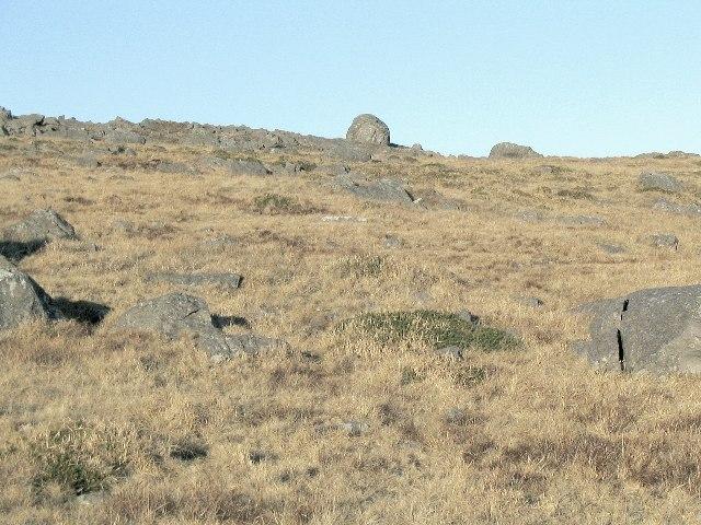 Rocks on the southeast slope of Esgair Hir
