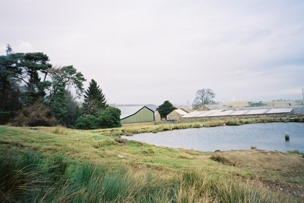 Pond and Wood Hall Farm