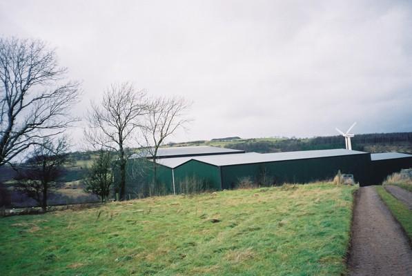 Green barns and wind turbine, Newlands