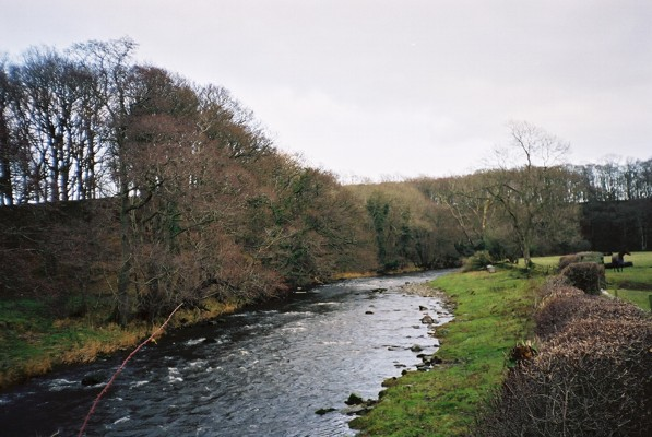 River Caldew near Bellbridge