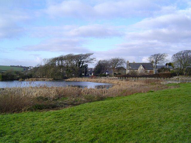 Village pond at St Brides