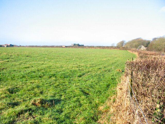 A Vale of Glamorgan field