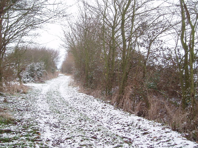 Bridleway leading north from New Farm