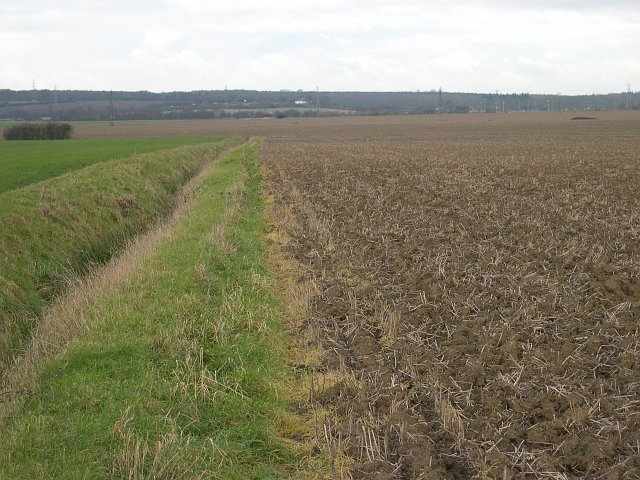 Farmland and Drainage Ditch