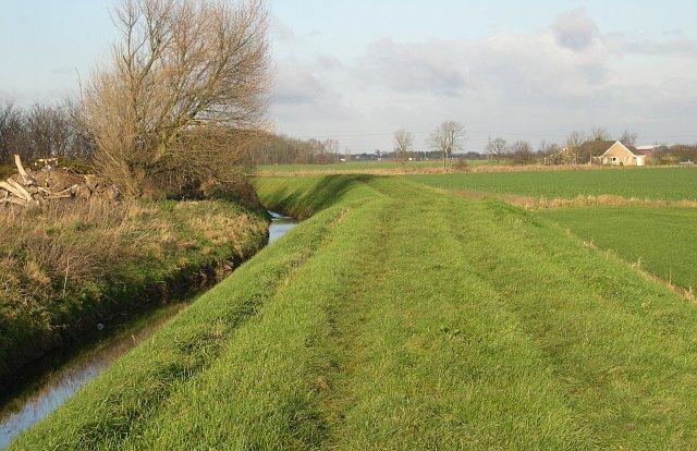 The Car Dyke near Grange Farm