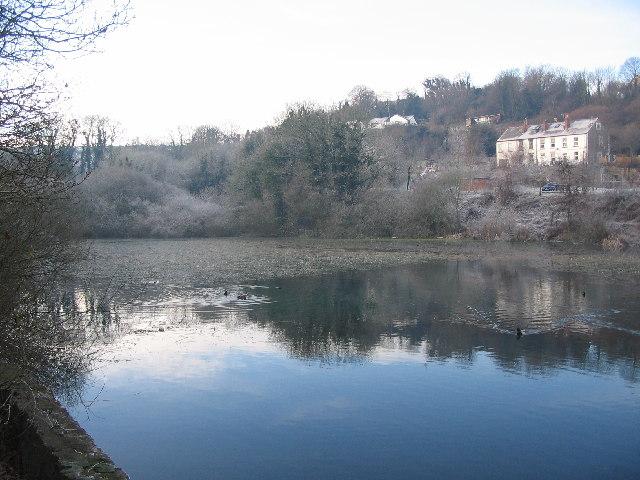 Mill Pond, Bryn Celyn