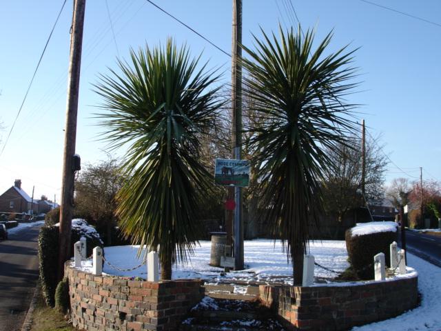 Hooe Common Green