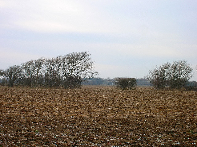 Frozen field near Hale Farm