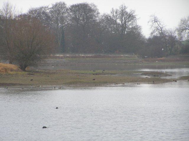Pebley Pond