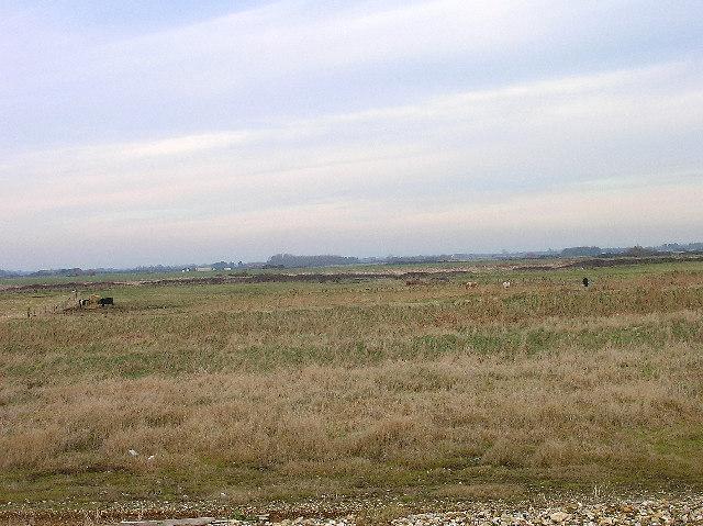 Farmland, Bracklesham Bay