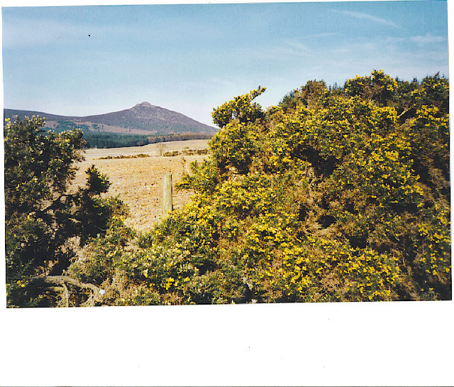 Mither Tap of Bennachie from southeast