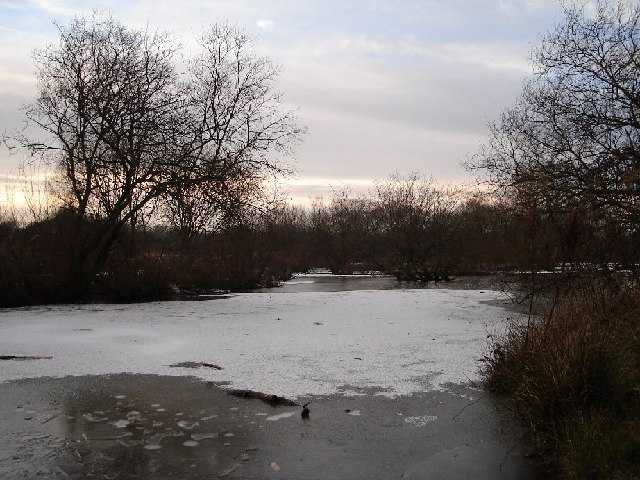 Ditchling Common Pond