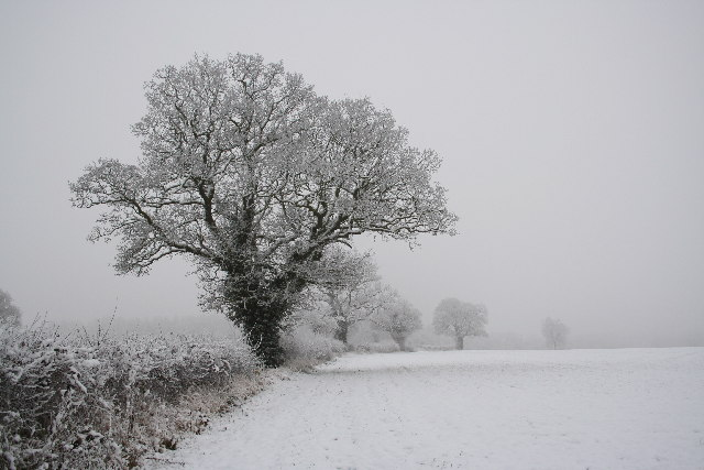 Wintry scene in Doddington
