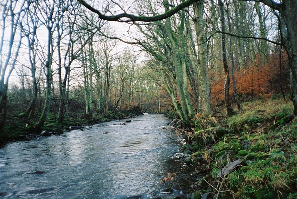 River Caldew near Newlands