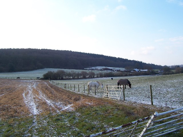 Pewley Down, Guildford, with 'The Chantries' in background