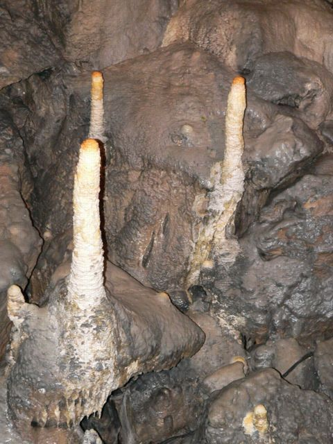 Poached Egg Stalagmites, Poole's Cavern.