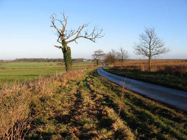 NE of Little Weighton