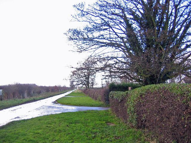 Near Westfield Farm