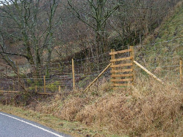 Ladder stile over deer fence for new forestry at Easter Eurach