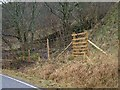 NM8500 : Ladder stile over deer fence for new forestry at Easter Eurach by Patrick Mackie