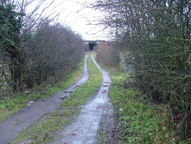 Muddy track leading to railway bridge