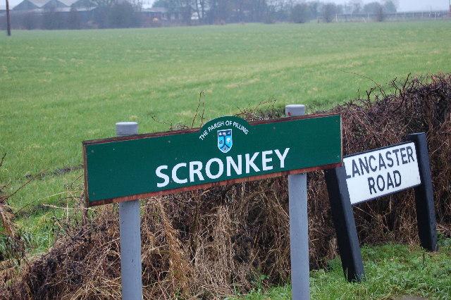 Scronkey