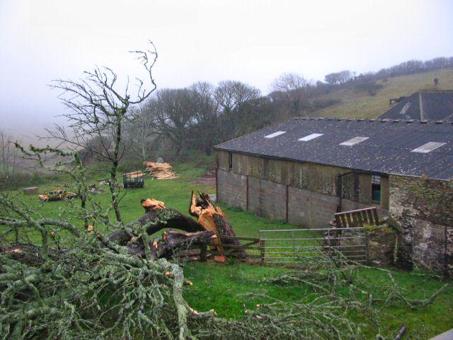 Start Farm - South Devon