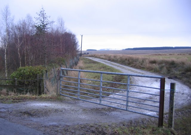 A seven barred gate.