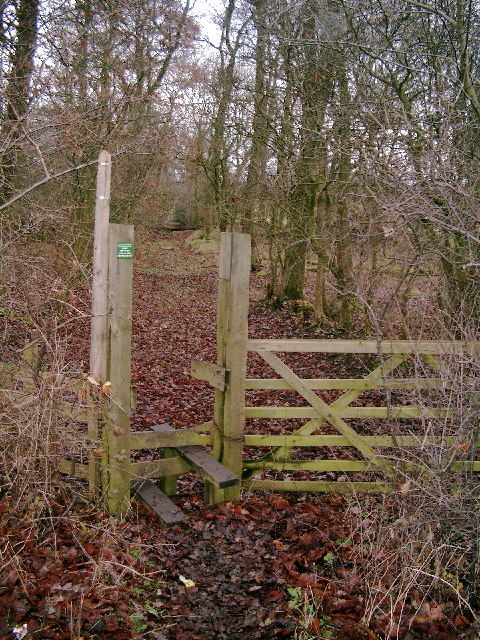 Stile and Roman Road