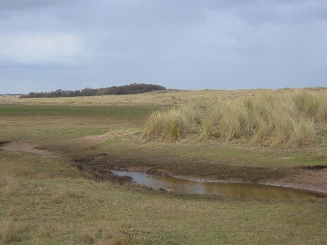 New dunes, West Barns Links