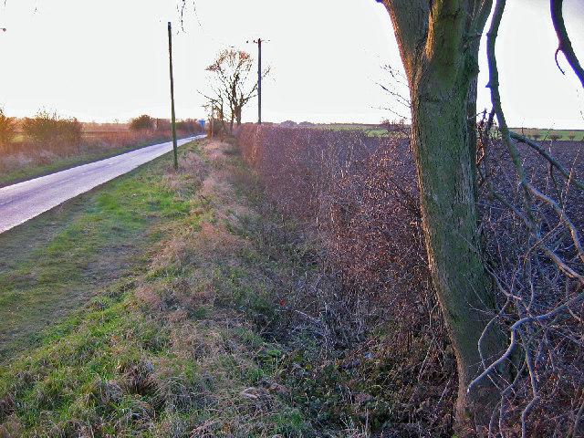 Near Ella Hill