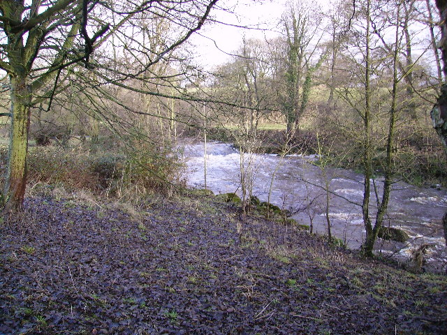Weir on the Wyre