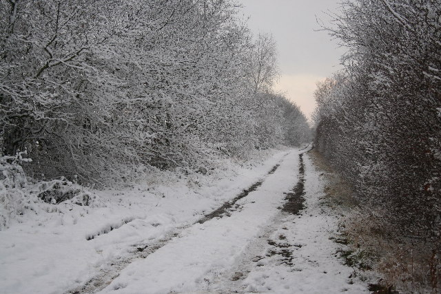Mainline to Thorney