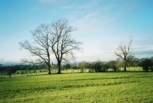 Pastures east of Skirwith