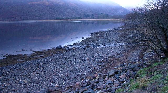 Loch Creran Shoreline