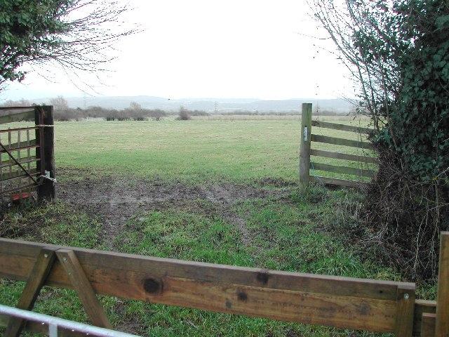 Puxton Moor