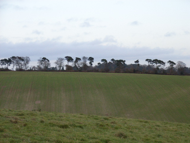 Farmland at Sheepridge