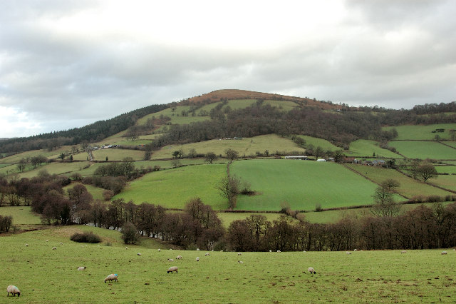 Looking towards Garway Hill