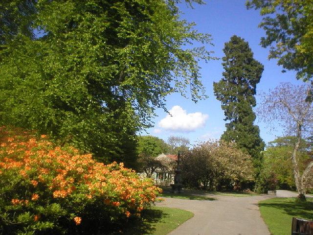 Hazlehead Park in Spring