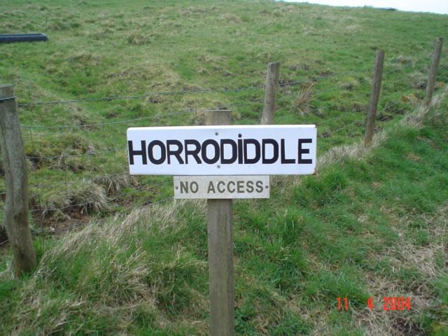 Horrodiddle.