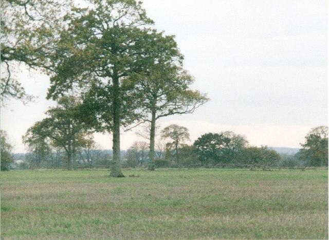 Field, south of Green Lane, Trowbridge
