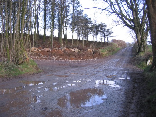 Wider Junction Required for Timber Harvest.