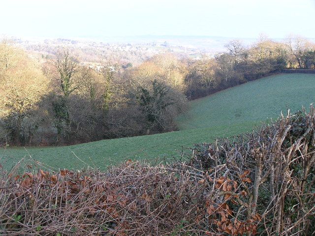 Wooded valley, looking north
