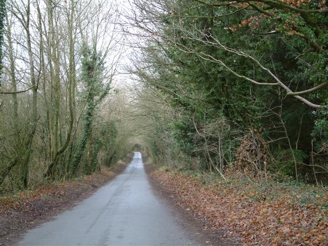 The road to Deane and Ashe