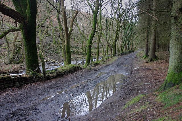 Track in Glen Auldyn