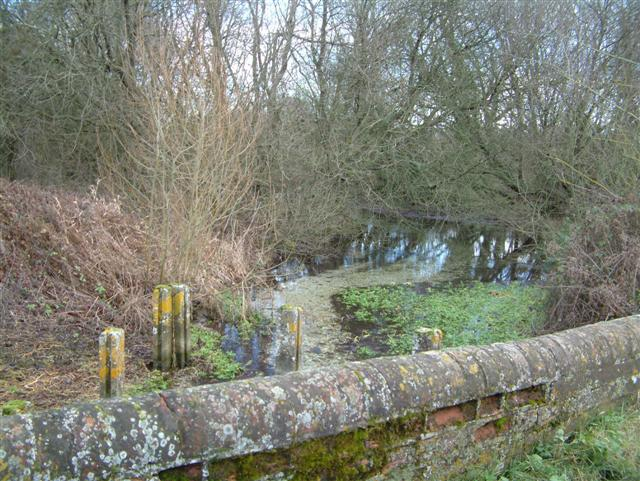 River Test at Polhampton